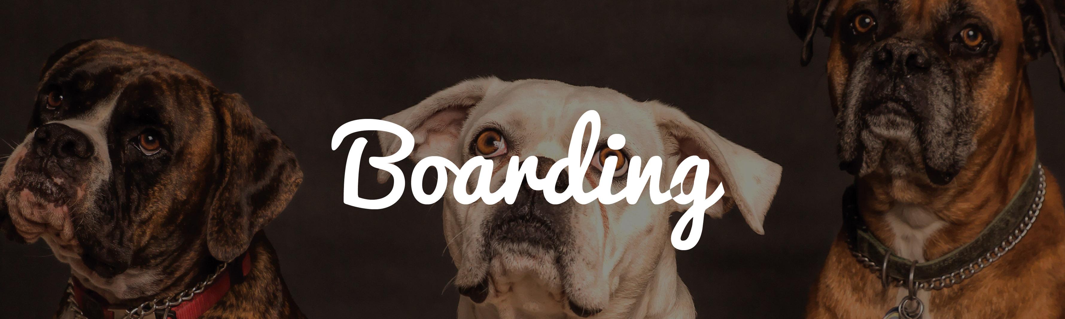 BoardingR
