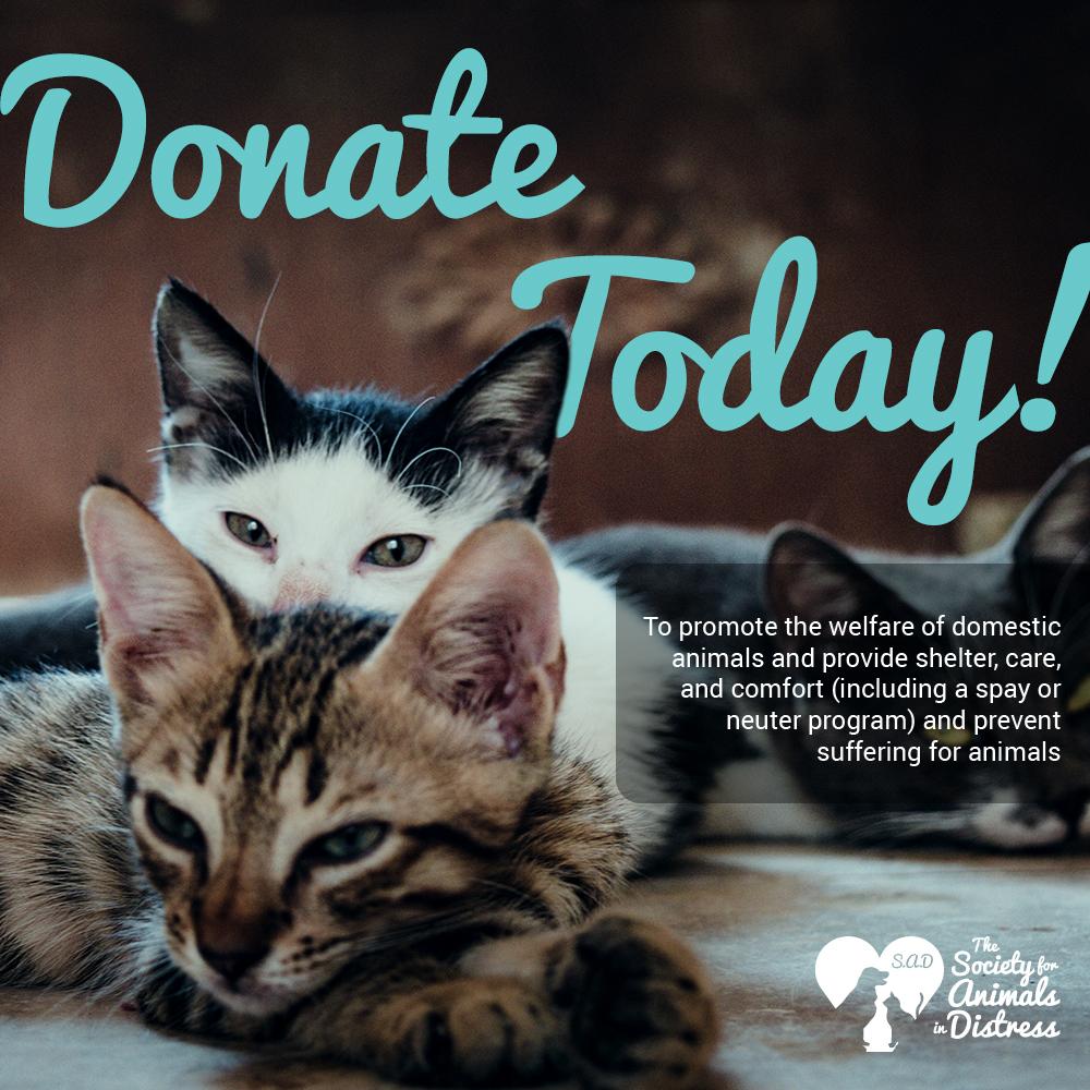 SAD_Donate1