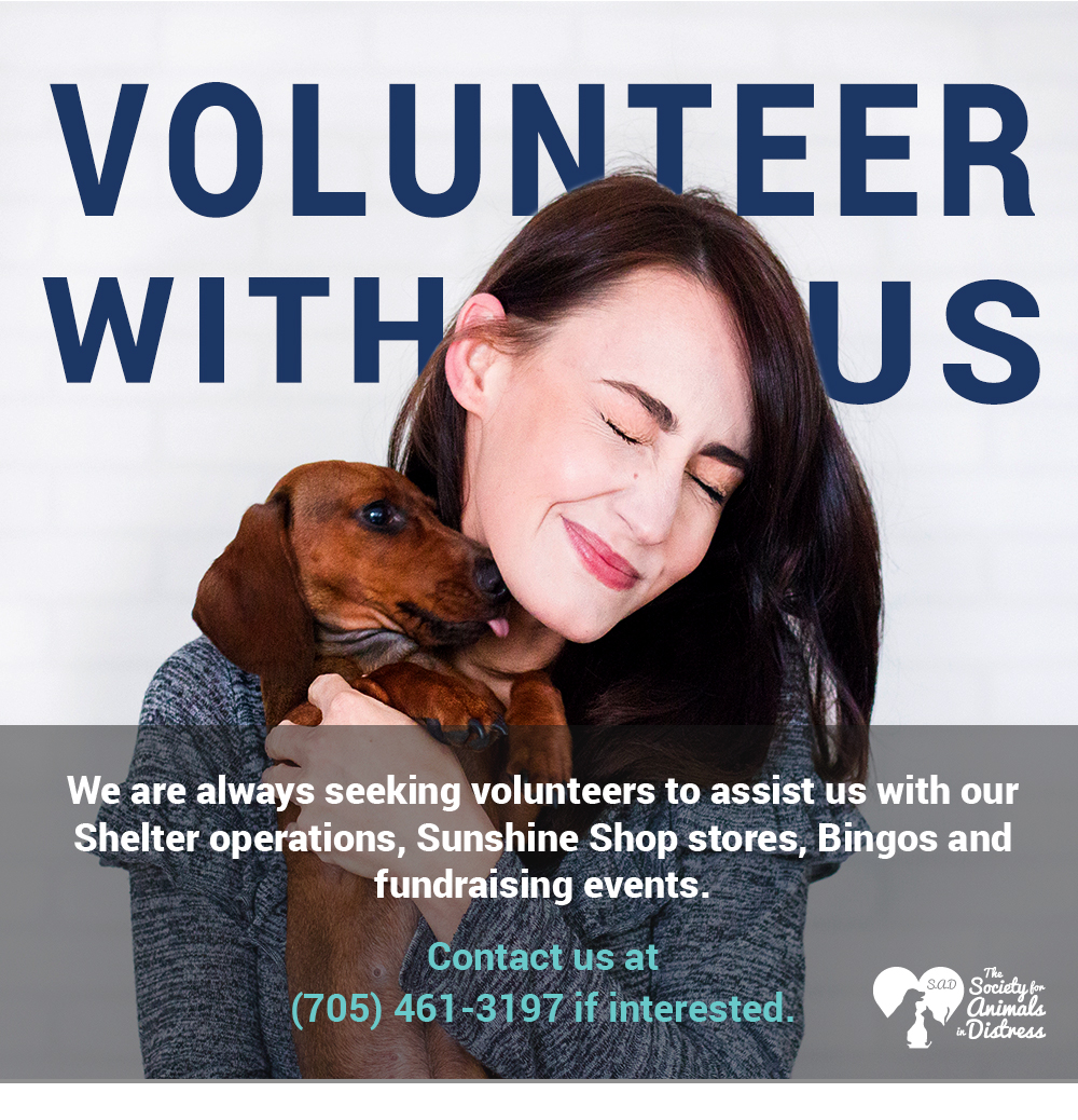 SAD_VolunteerWithUss